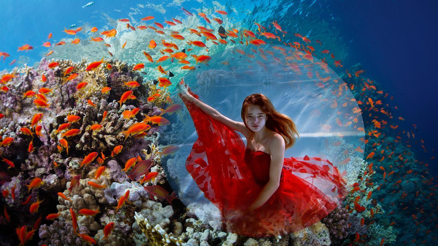 Sea Creatures Photo Frames APK-Download - Kostenlos Fotografie APP ...