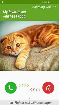 Fake Call Cat poster