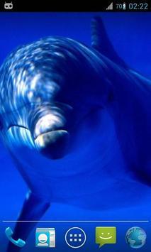 Magic Ripple : Cute Dolphin apk screenshot