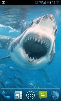 Magic Touch Shark Attack screenshot 2