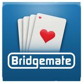 Bridgemate icon