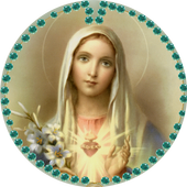 Touch Rosary icon