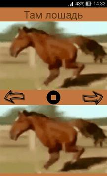 Horse with two legs: cool Youtube memes for fun poster