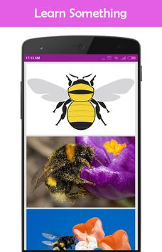 Bumble Bees on Your Screen screenshot 3