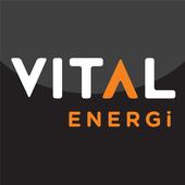 Vital Energi icon