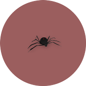 Spider Attack icon