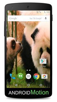 Chow Chow Background apk screenshot