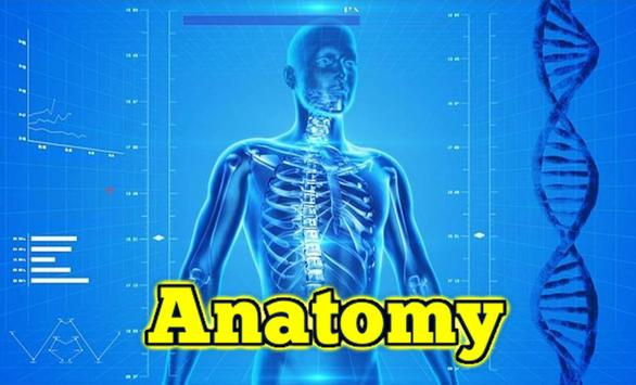 Anatomy Learning  3D Teach poster
