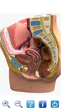 Anatomy Learning  3D Teach screenshot 4