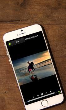 FLV Video Player apk screenshot