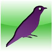 Cuckoo (periodic  beeper) icon