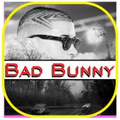 Bad Bunny Song icon