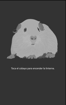Guinea pig flashlight apk screenshot