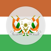 Niger Constitution 2010 icon