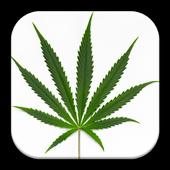 Hemp Cannabis Wallpaper icon