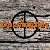 Opening Day icon