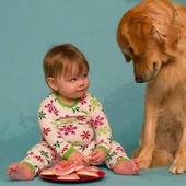Cute Baby Photo Book icon