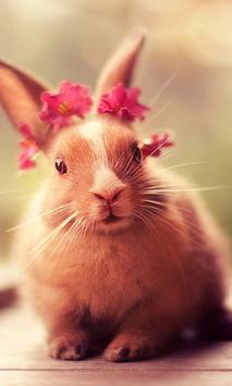 أرنب لطيف Lwp الملصق