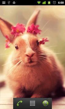 أرنب لطيف Lwp تصوير الشاشة 1