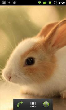 cute bunny live wallpaper screenshot 1
