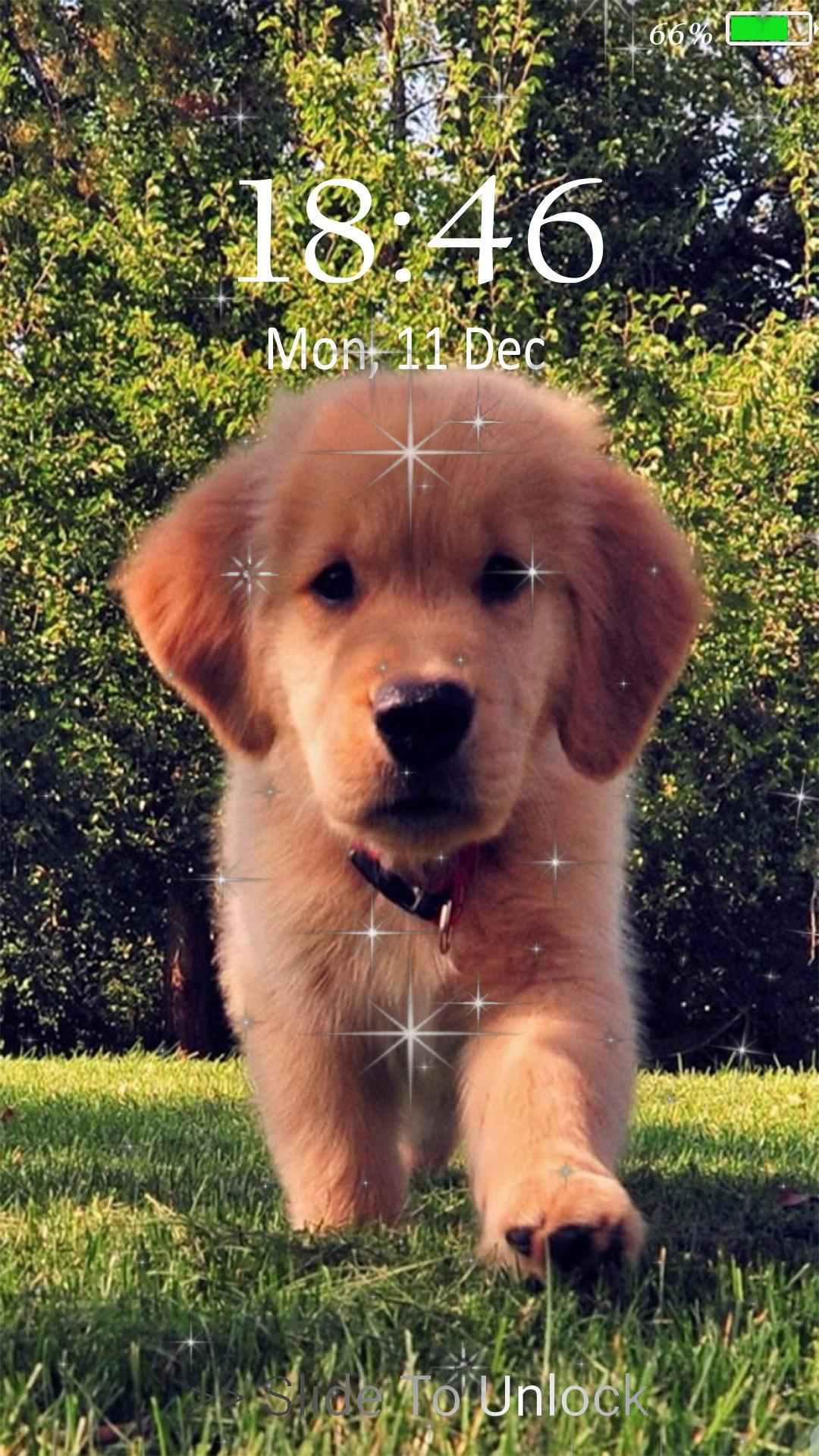 Cute Puppy Dog Live Wallpaper Lock Screen For Android Apk Download