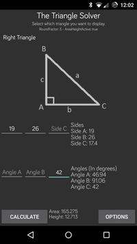 Triangle Solver poster