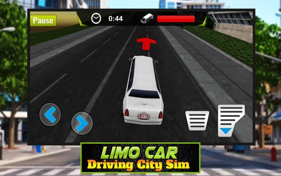 Limo Car Driving City Sim screenshot 6