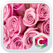 Pink Roses CLauncher Theme icon