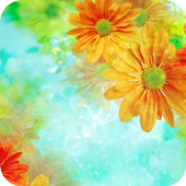 Colorful Flower Theme Android icon