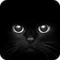 Black Cat eyes Theme CLauncher