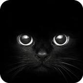 Black Cat eyes Theme CLauncher icon