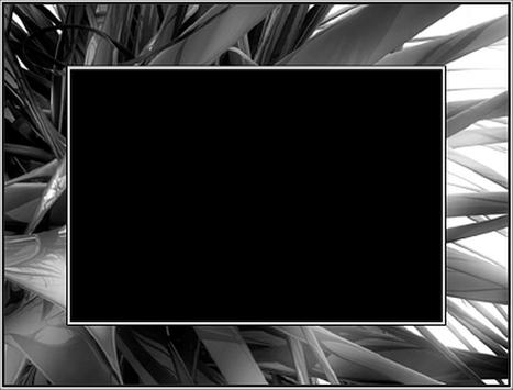 Black and White Photo Frames apk screenshot