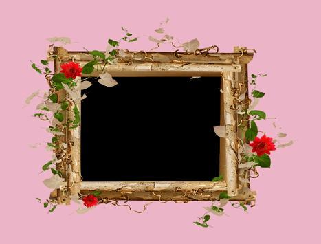 Lovely Flowers Photo Frames poster