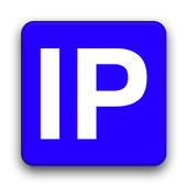Network Information icon