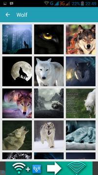 1000 Wolf Wallpapers apk screenshot