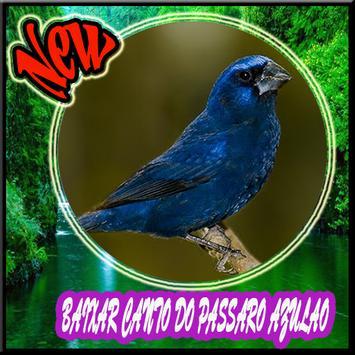 Cantos do Passaro Azulao Novo poster