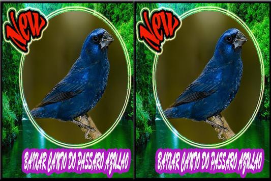Cantos do Passaro Azulao Novo screenshot 1