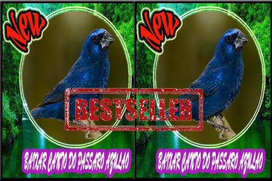 Cantos do Passaro Azulao Novo screenshot 3