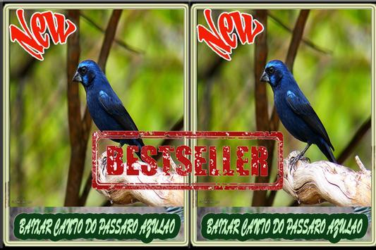 Cantos do Passaro Azulao Novo screenshot 4