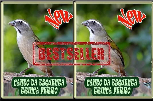 Cantos da Esquenta Trinca Ferro Novo スクリーンショット 2