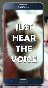 Call From Cat screenshot 1