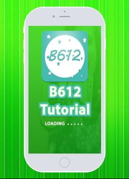 Guide for B612 Camera poster