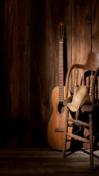 Country Music Musica Country Gratis screenshot 6