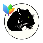 Theme XperiaCan -Black Panther icon