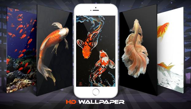 Koi Fish Wallpaper And Background poster