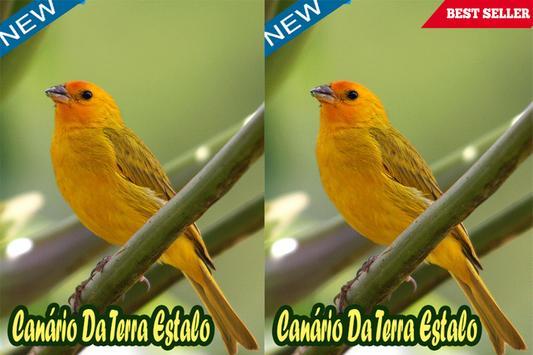 Canário Da Terra Estalo Mp3 apk screenshot