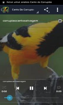 Canto do Corrupião apk screenshot
