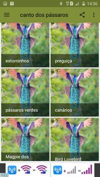 canto dos pássaros screenshot 3