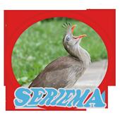 Canto de Seriema Brasileiro (Cariama Cristata) icon