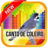Canto De Coleiro TuiTui 2017 icon